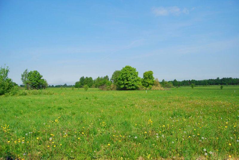 земельный участок в районе купить недорого